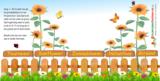 Flowercup type Zonnebloem + Tekst_6
