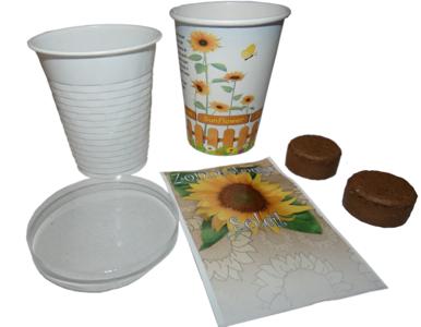 Flowercup Zonnebloem 35 stuks