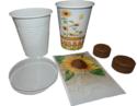 Flowercup-Klas-Zonnebloem